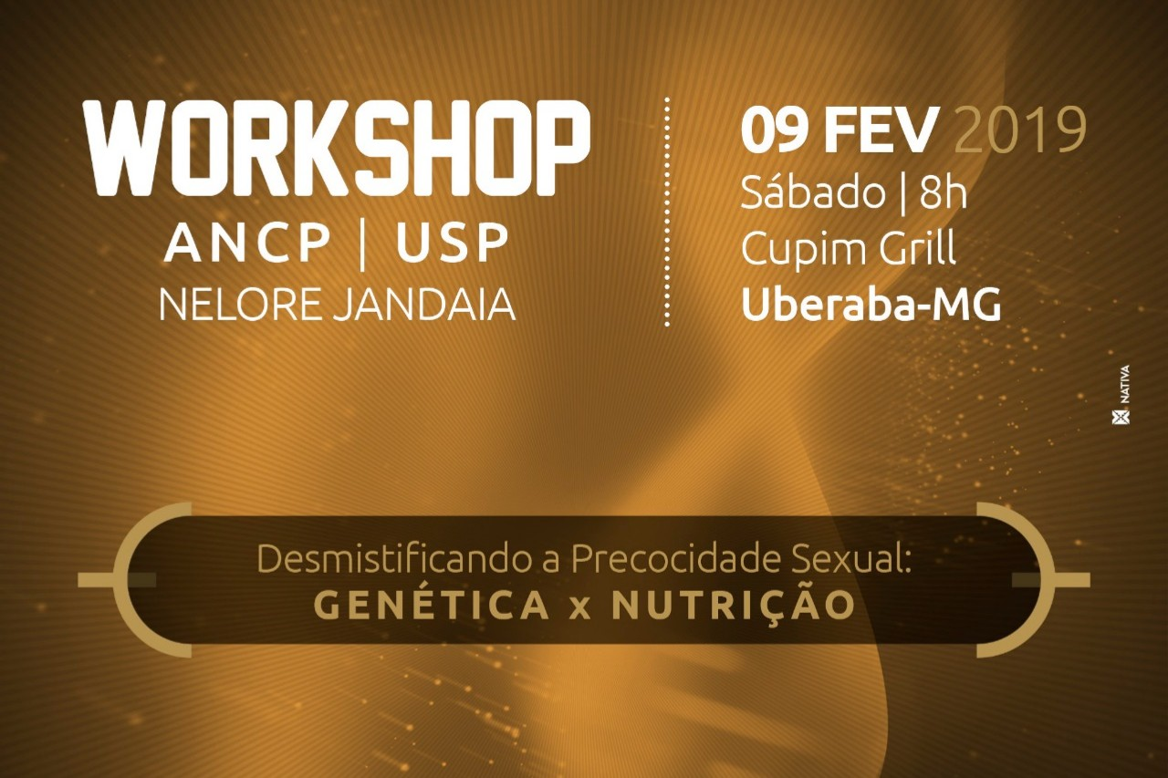 ANCP, USP e Nelore Jandaia promovem Workshop sobre Precocidade Sexual