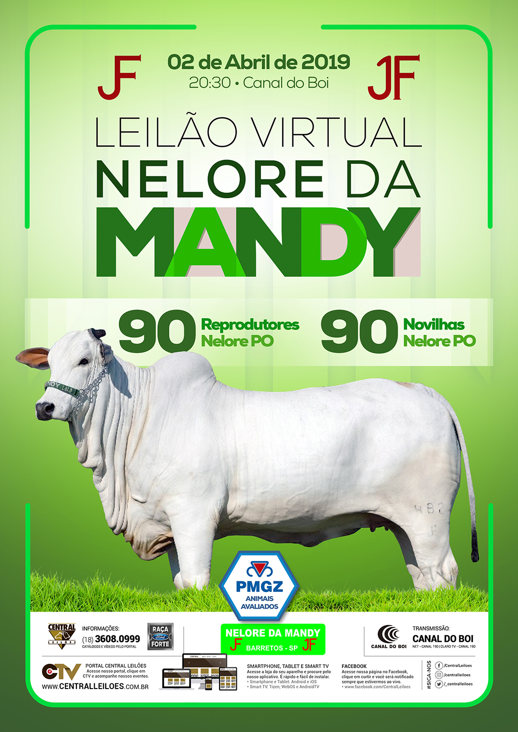 LEILÃO VIRTUAL NELORE DA MANDY